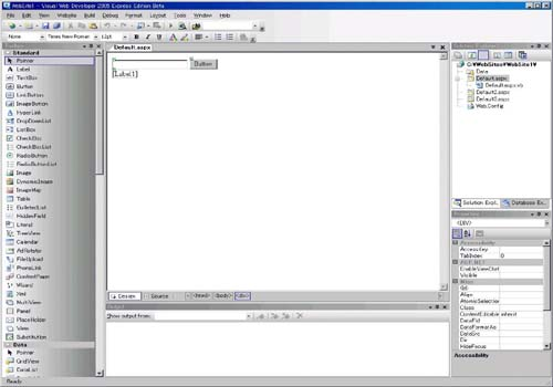 Visual Web Developer 2005