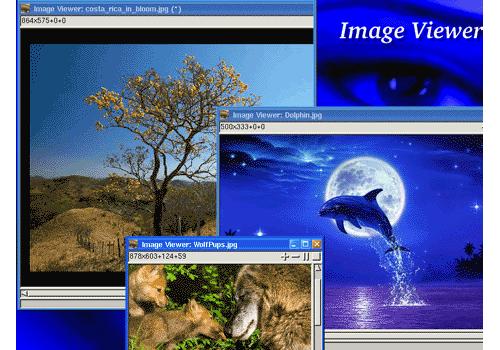 Image Viewer