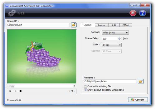 ConvexSoft Animated GIF Converter