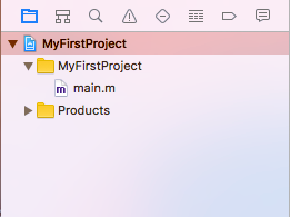 Project Navigator e file main.m