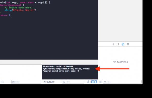 Debug Area su Xcode