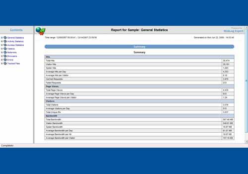 WebLog Expert Standard