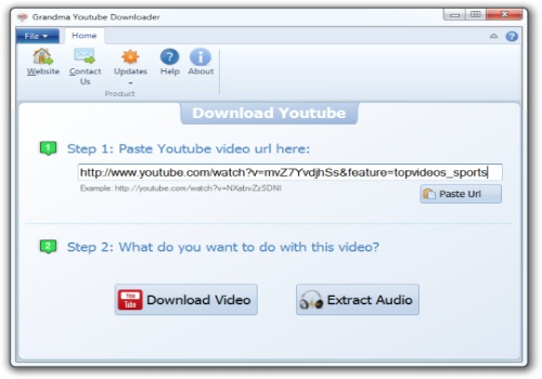 Grandma Youtube Downloader