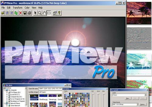 PMView Pro