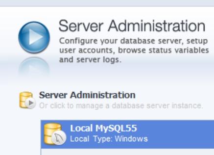 mysql workbench server administration