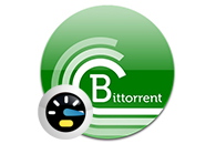 BitTorrent Acceleration Tool