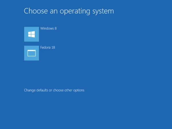 uefi fedora18 windows8