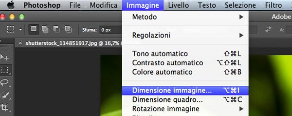 Dimensione Immagine