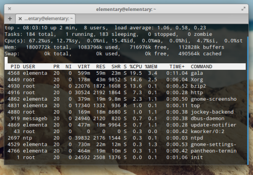 Il terminale in Elementary OS