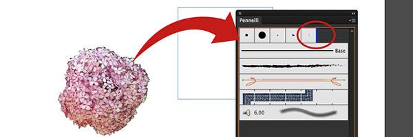 Importazione immagine raster
