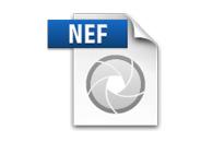 Free NEF to JPG Converter