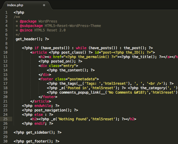Il file index.php del Blank Theme