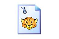 Cheetah Video Converter