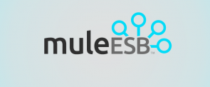 mule-esb_feat