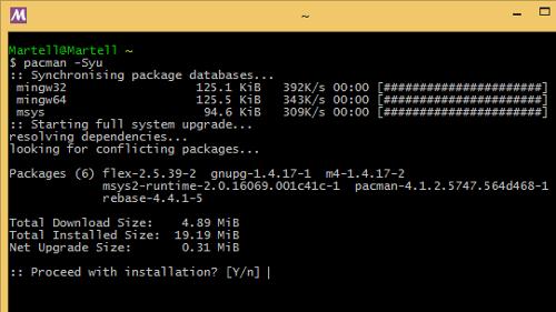 MSYS2: shell Linux e Pacman su Windows