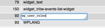 Modifiche alla tabella wp_options