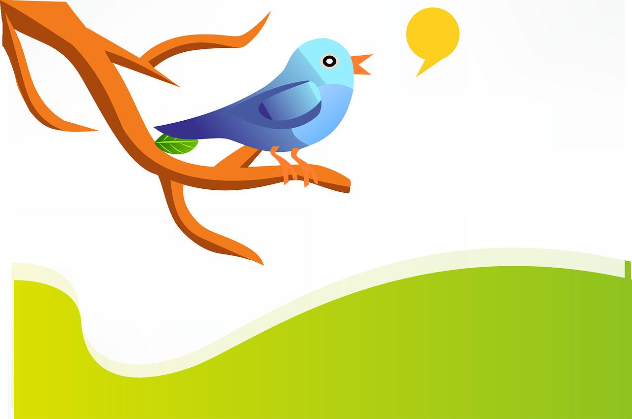 Twitter e business: i settori sono importanti