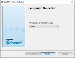 hamachi_01
