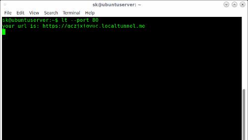 Localtunnel: accesso remoto ad un server locale con NodeJS