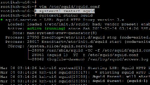 HTTP caching proxy: demo App senza connessione