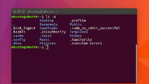 Linux: il mistero dei file nascosti nella home directory
