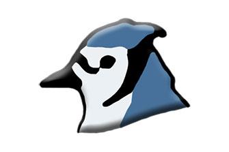 BlueJ Portable