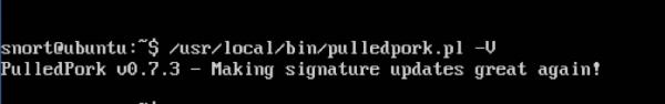Test esecuzione PulledPork