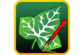 Ivy Draw