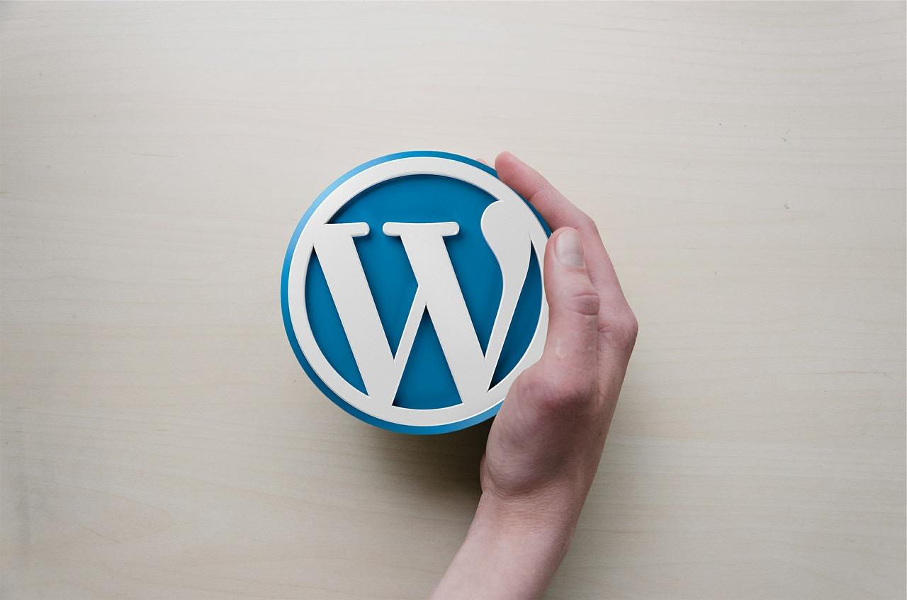 WordPress: i rischi dei plugin e dei templare piratati