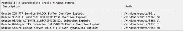 Output di searchsploit su Exploitdb