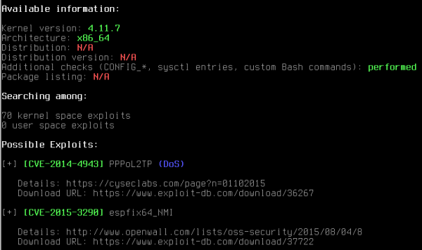 Output di Linux Exploit Suggester