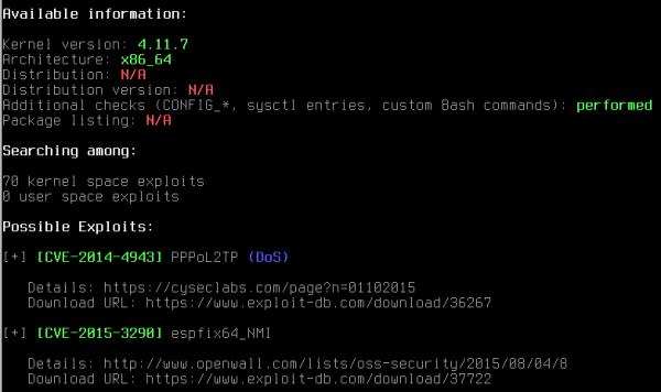 Output di Linux Exploit Suggester