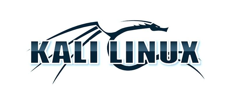 Ubuntu VS Kali Linux: che distro usare per l'hacking?