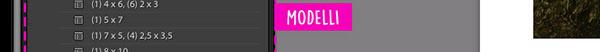 Interfaccia Modulo Stampa