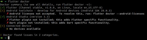 Possibile output del comando 'flutter doctor' con diverse problematiche di configurazione