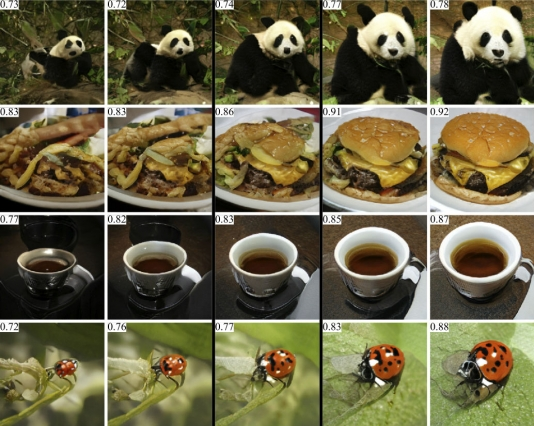 GANAnalyze è in grado di generare immagini a diversi livelli di memorabilità