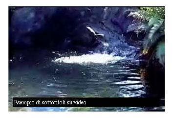 Screenshot del filmato in esecuzione