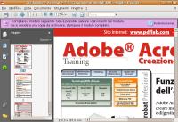 Adobe Reader 8.1.1 Linux