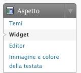 widget tag wordpress