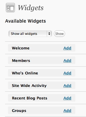 widget buddypress
