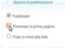 Opzioni di pubblicazione