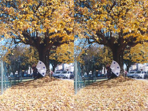 foto originale e foto ricostruita a confronto