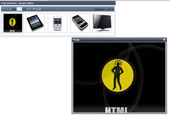 ExtJS Image Gallery