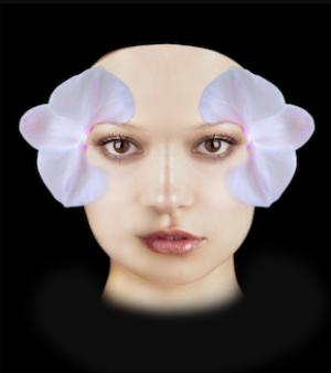 Inseriamo il particolare del fiore