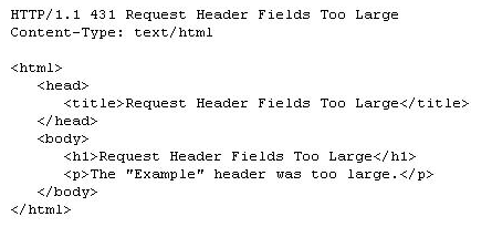 431 Request Header Fields Too Large