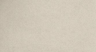 Tela antica, risultato parziale