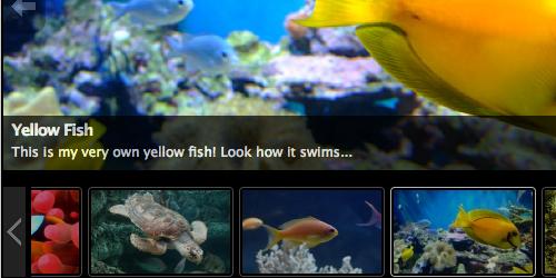 Figura 4. WordPress Slideshow Gallery