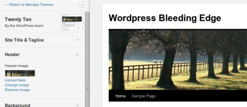 Figura 3. WordPress 3.4 theme customizer