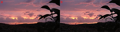 foto dopo aver applicato il filtro Contrasta migliore
