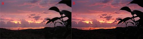 paragone tra la foto prima e dopo l'applicazioni dei filtri e delle regolazioni